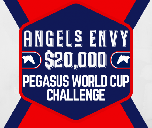 Picks for the Angel's Envy $20,000 Pegasus World Cup Challenge