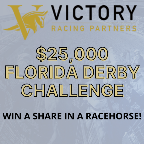 Win a Racehorse